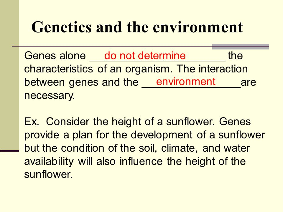 Genetics and the environment
