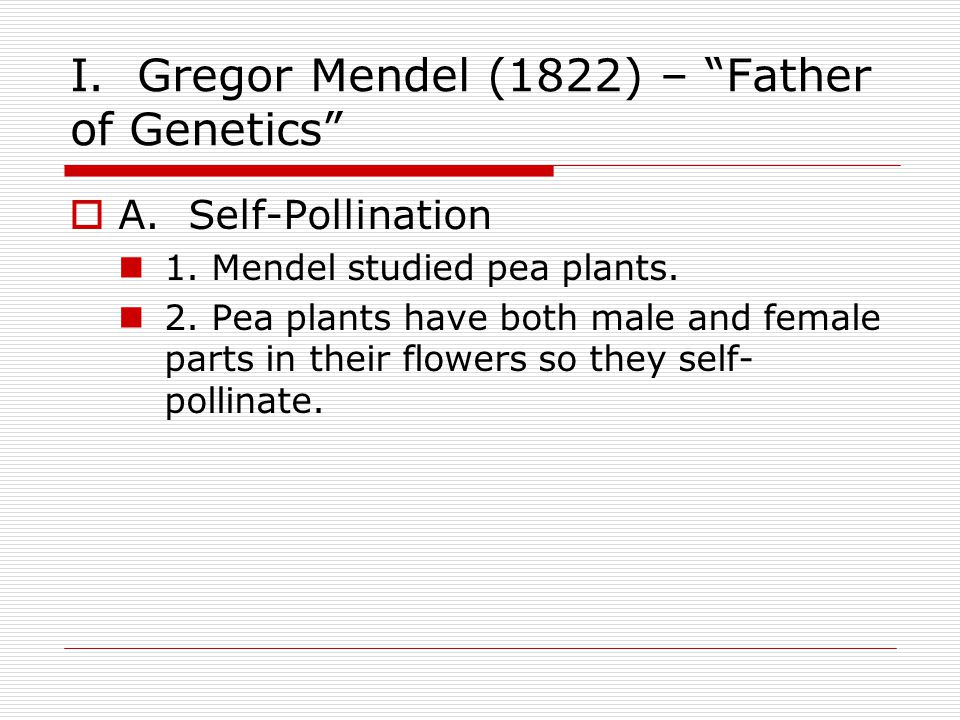 I. Gregor Mendel (1822) – Father of Genetics