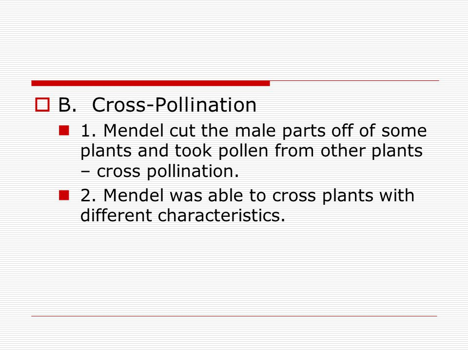 B. Cross-Pollination 1. Mendel cut the male parts off of some plants and took pollen from other plants – cross pollination.