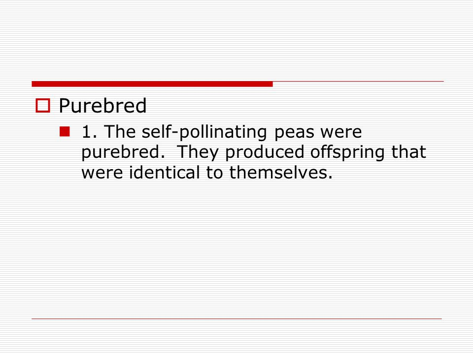 Purebred 1. The self-pollinating peas were purebred.