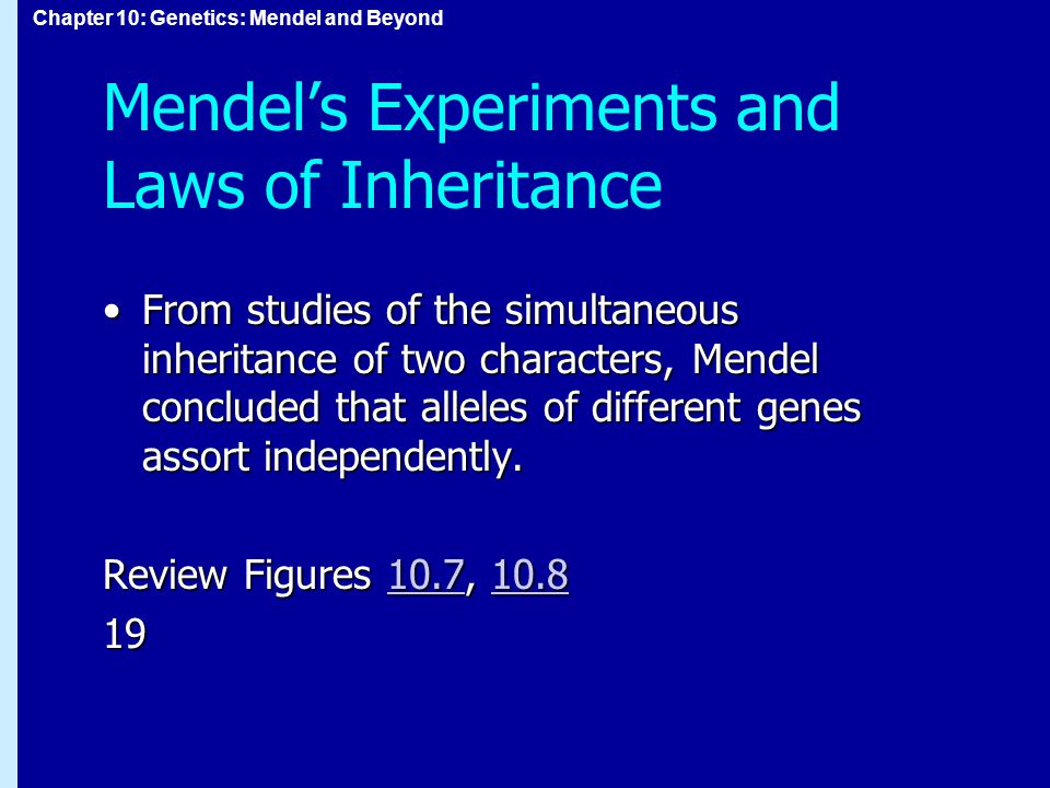 Mendel's Experiments and Laws of Inheritance