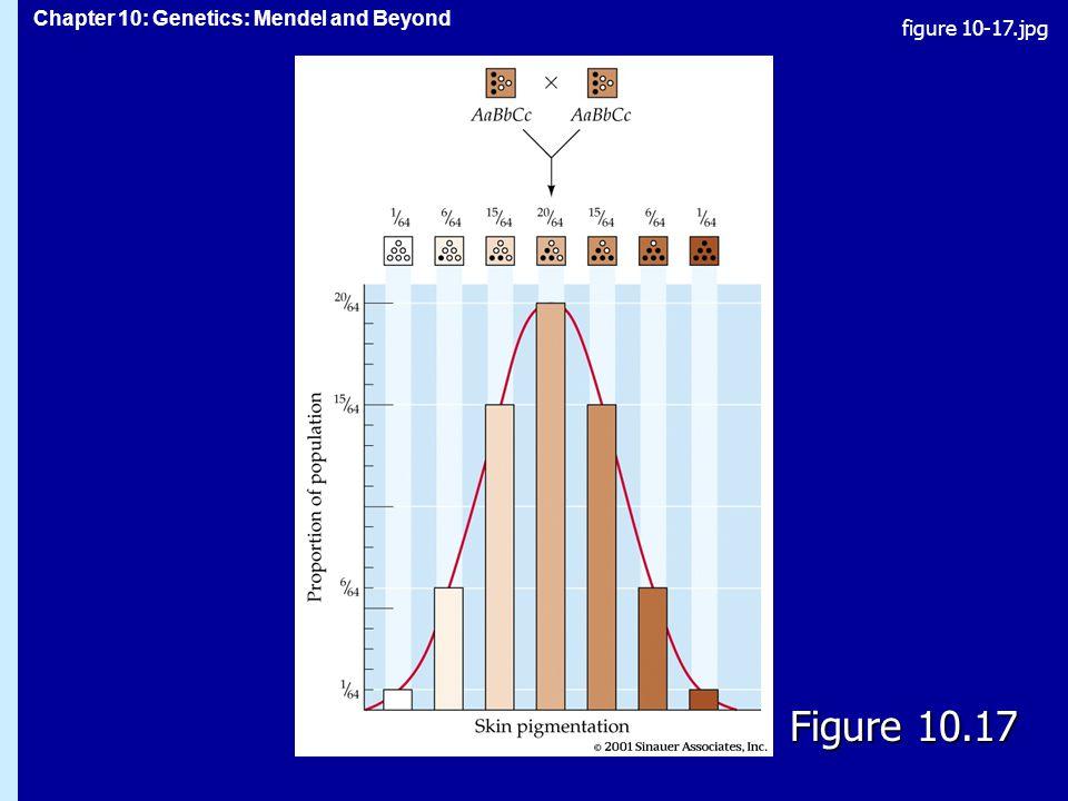 figure 10-17.jpg Figure 10.17 Figure 10.17