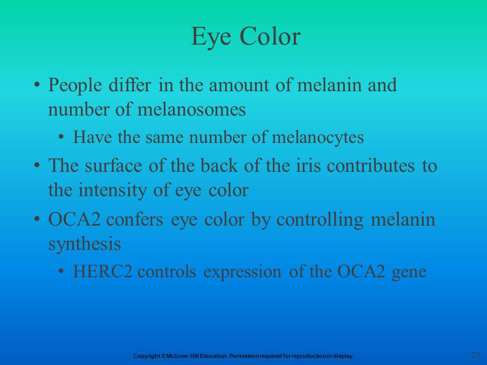 Eye Color People differ in the amount of melanin and number of melanosomes. Have the same number of melanocytes.