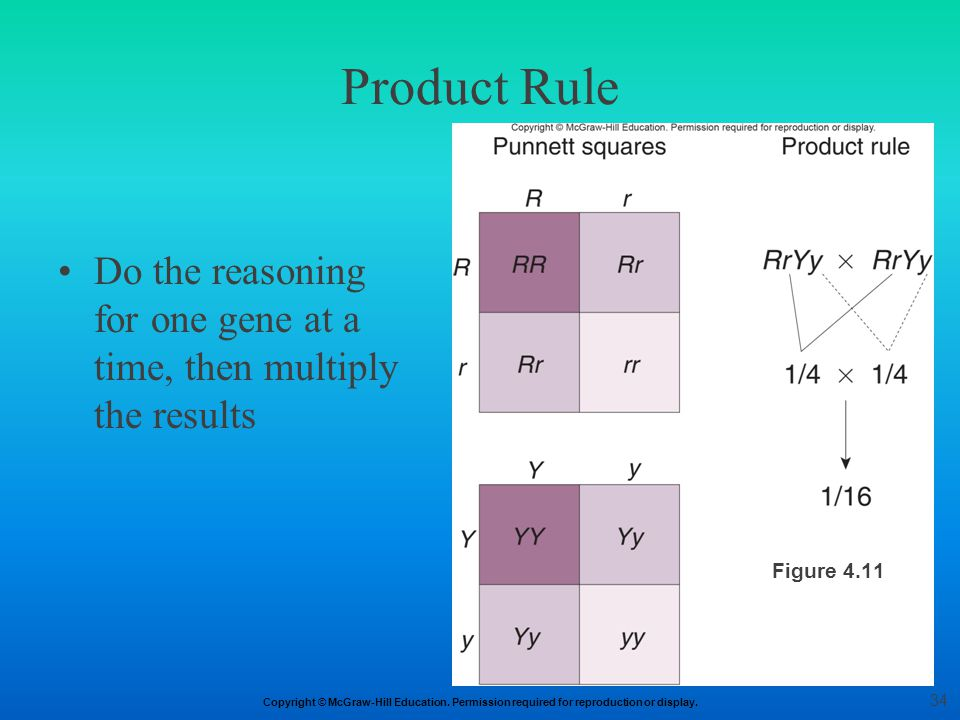 Product Rule Do the reasoning for one gene at a time, then multiply the results Figure 4.11