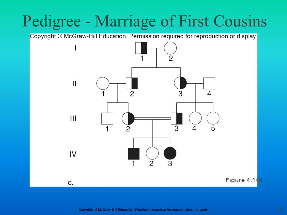 Pedigree - Marriage of First Cousins