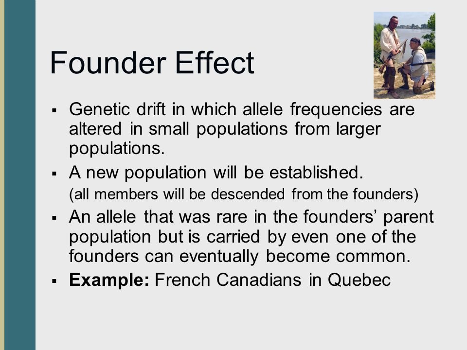 Founder Effect Genetic drift in which allele frequencies are altered in small populations from larger populations.