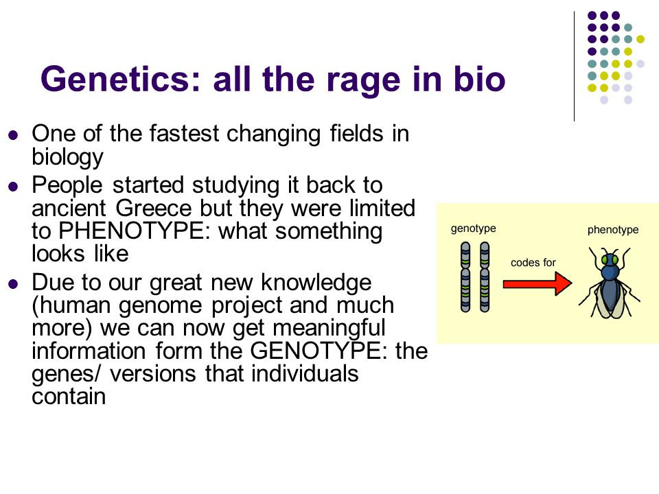 Genetics: all the rage in bio