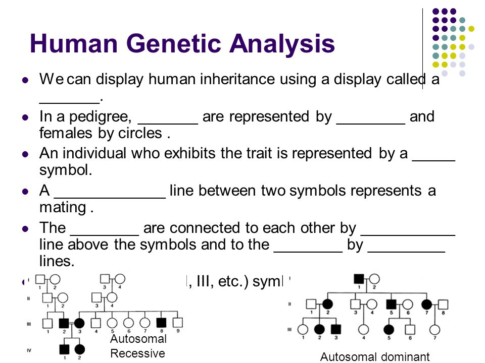 Human Genetic Analysis