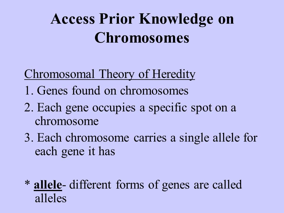 Access Prior Knowledge on Chromosomes