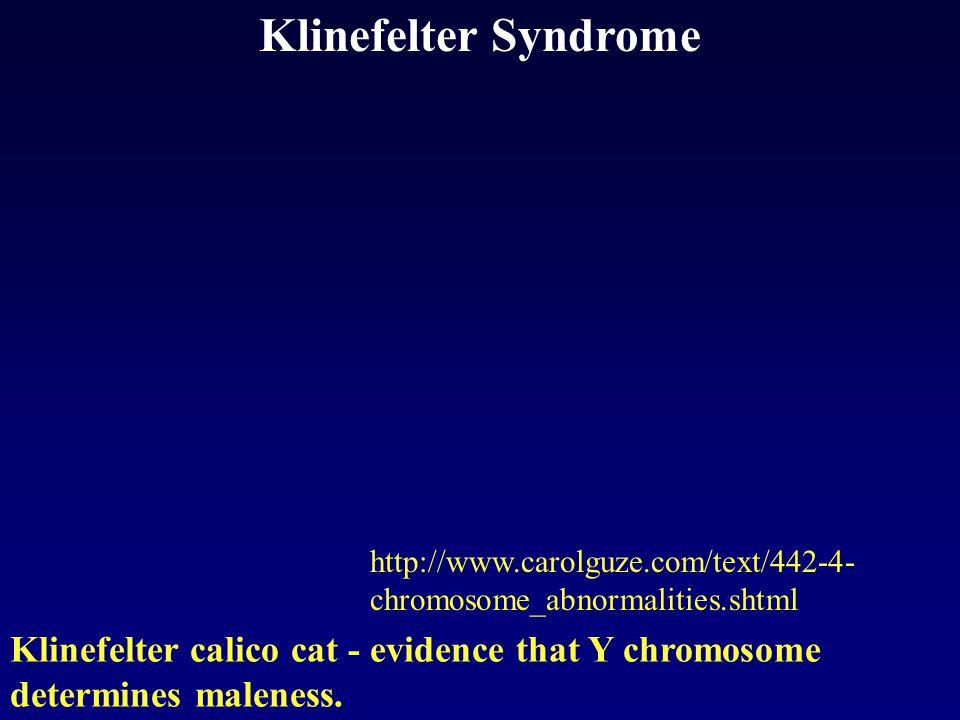 Klinefelter Syndrome http://www.carolguze.com/text/442-4-chromosome_abnormalities.shtml.