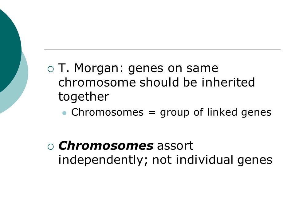 T. Morgan: genes on same chromosome should be inherited together