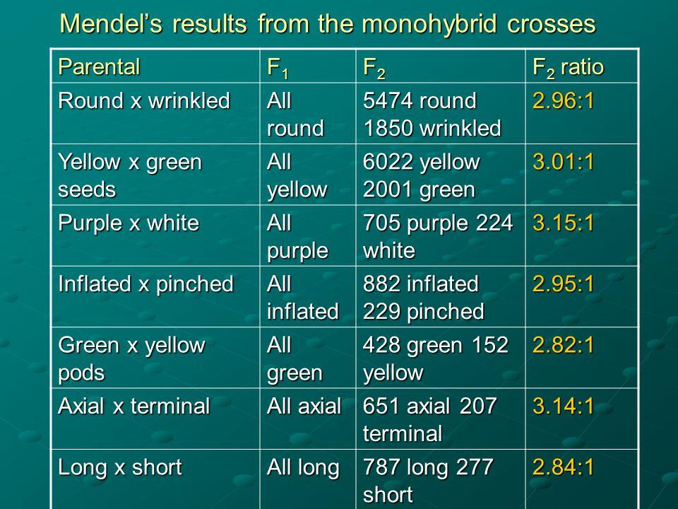 Mendel's results from the monohybrid crosses