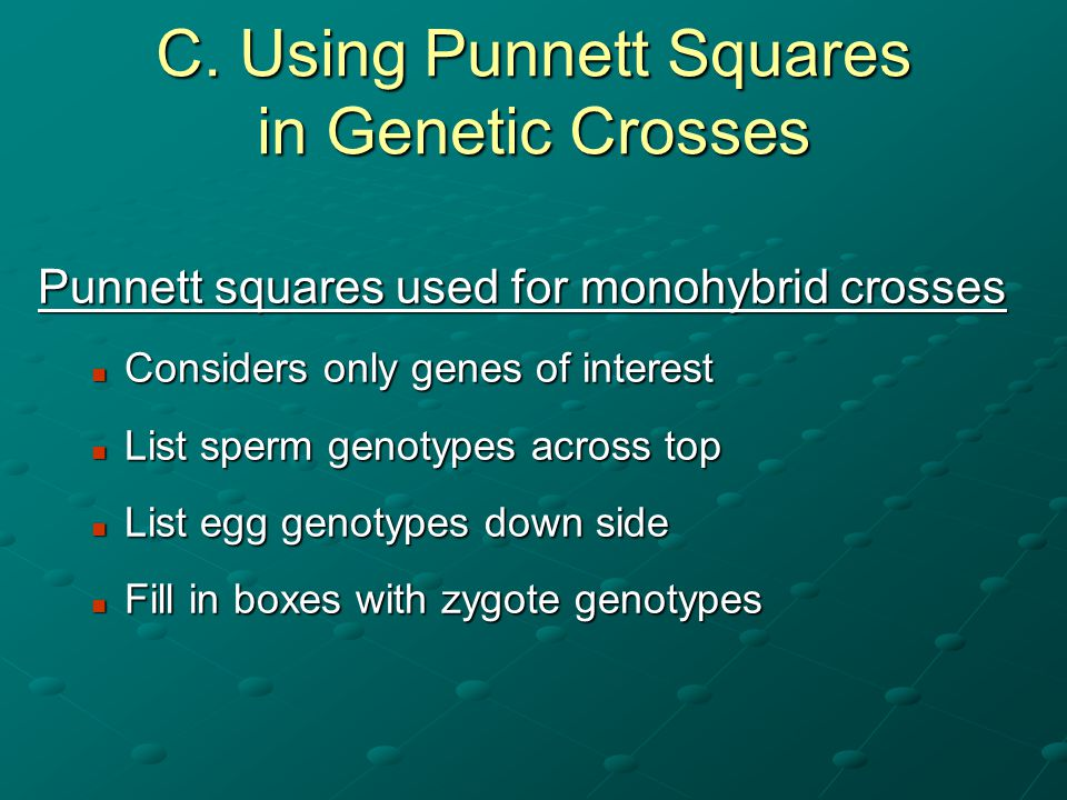 C. Using Punnett Squares in Genetic Crosses
