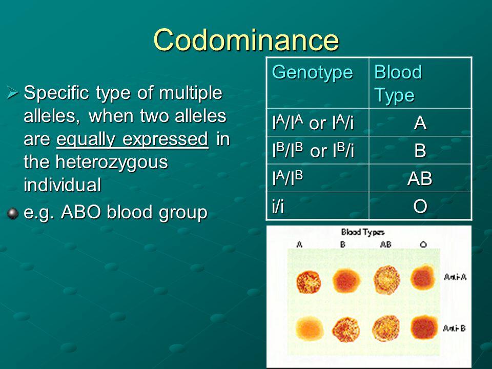 Codominance Genotype Blood Type IA/IA or IA/i A IB/IB or IB/i B IA/IB