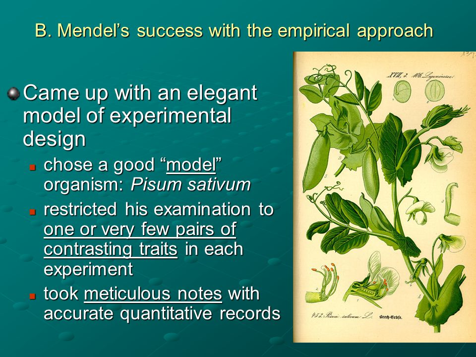 B. Mendel's success with the empirical approach