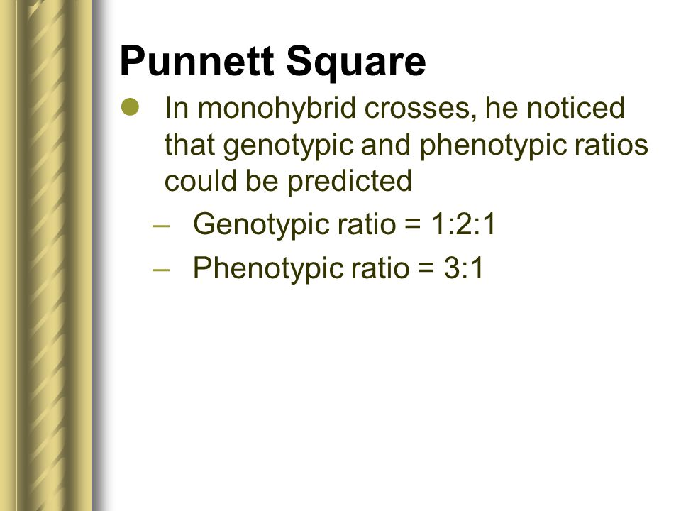 Punnett Square In monohybrid crosses, he noticed that genotypic and phenotypic ratios could be predicted.