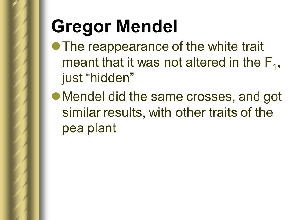Gregor Mendel The reappearance of the white trait meant that it was not altered in the F1, just hidden