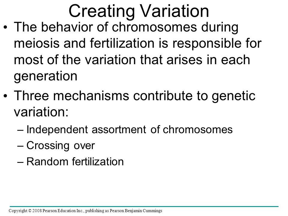 Creating Variation