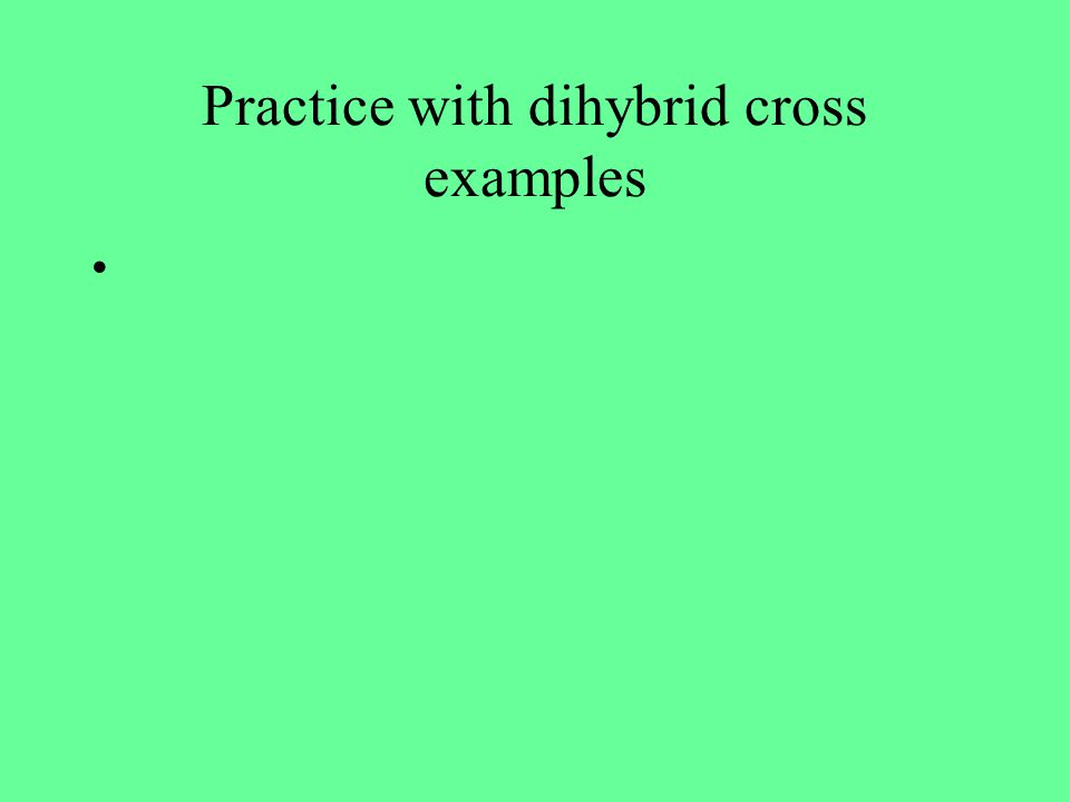 Practice with dihybrid cross examples