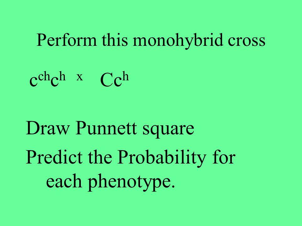 Perform this monohybrid cross
