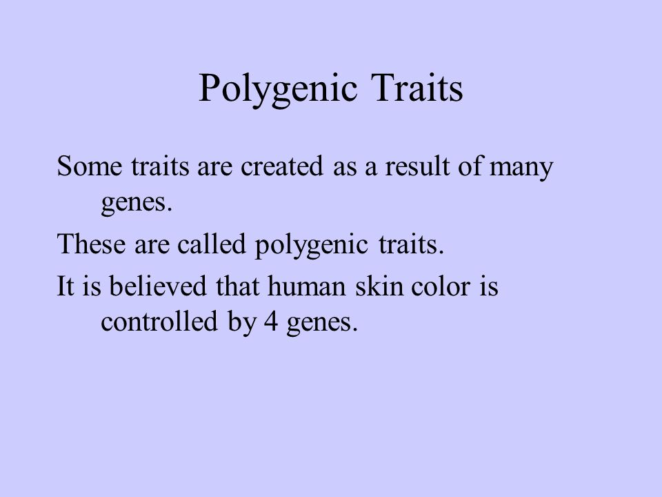 Polygenic Traits Some traits are created as a result of many genes.