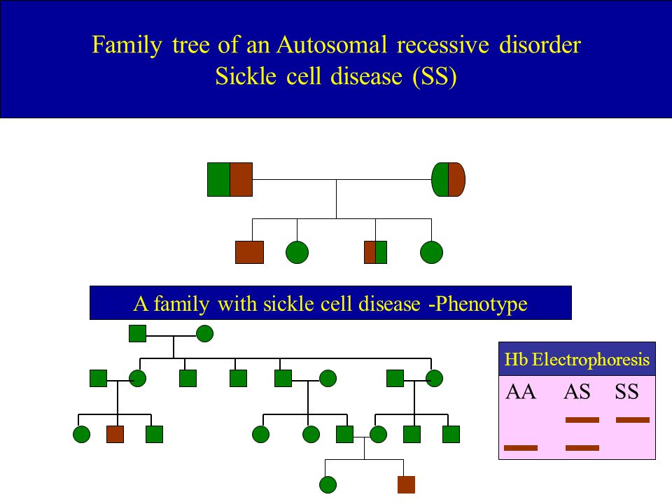 Family tree of an Autosomal recessive disorder