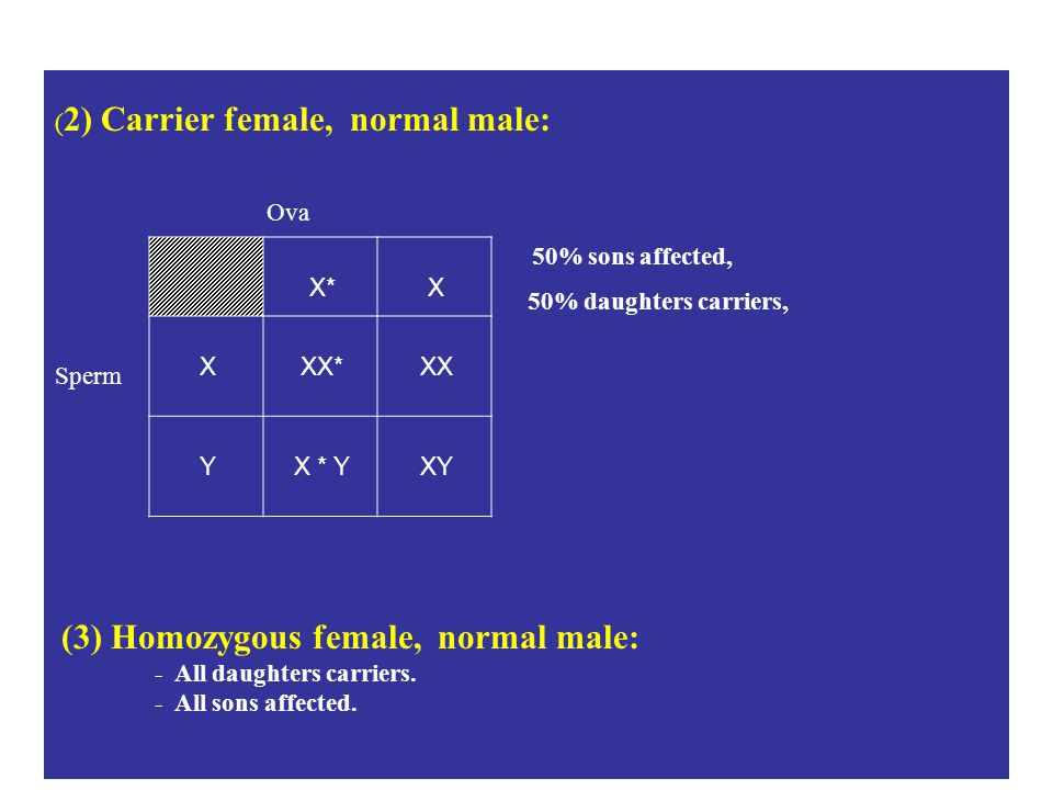 (2) Carrier female, normal male: