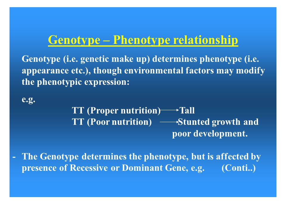 Genotype – Phenotype relationship