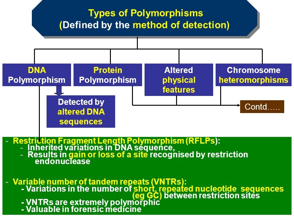 Types of Polymorphisms (Defined by the method of detection)