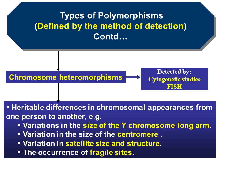 Types of Polymorphisms (Defined by the method of detection) Contd…