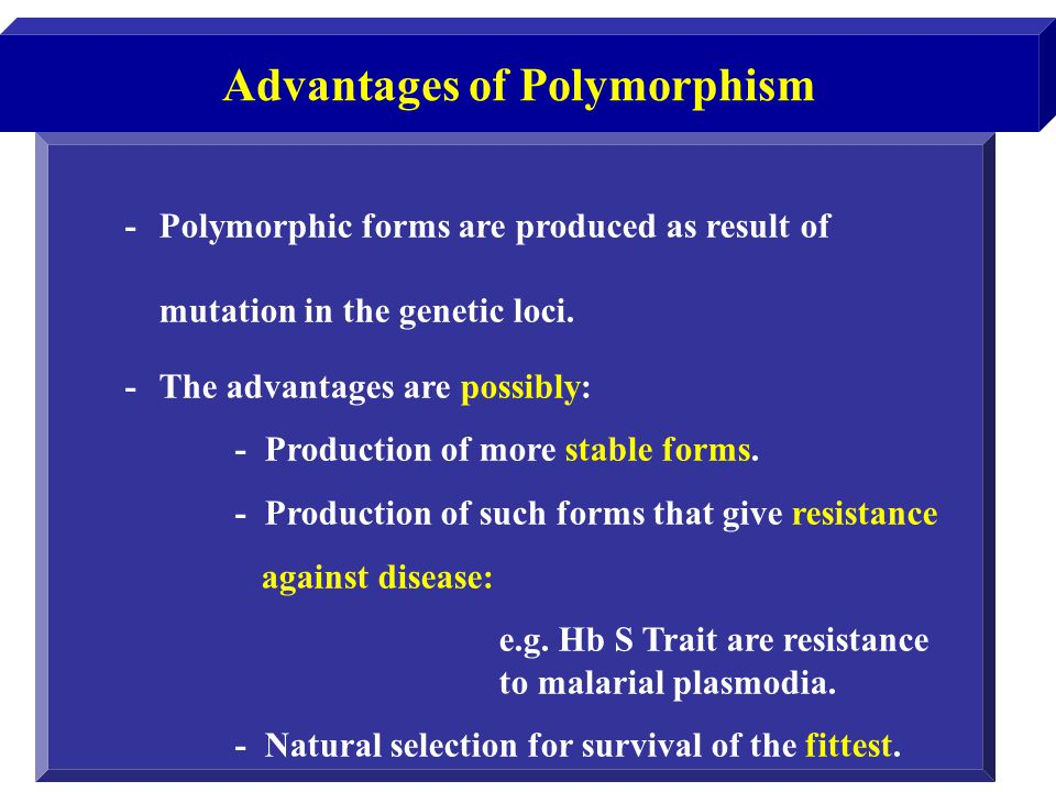 Advantages of Polymorphism