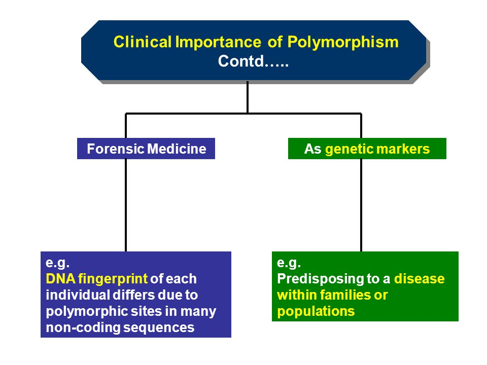 Clinical Importance of Polymorphism