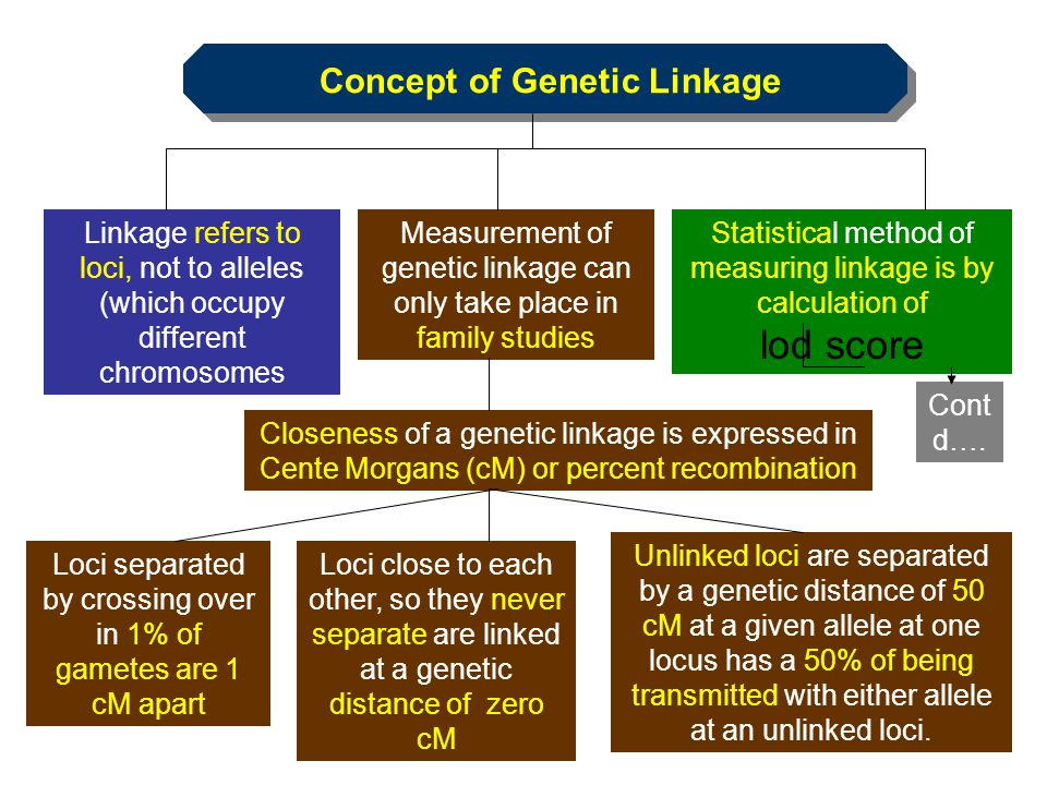Concept of Genetic Linkage