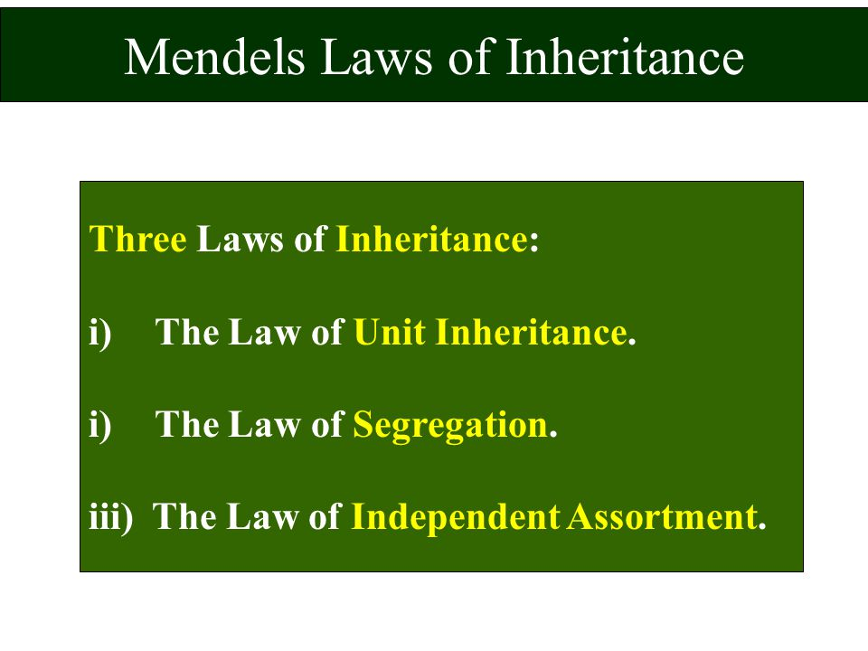Mendels Laws of Inheritance