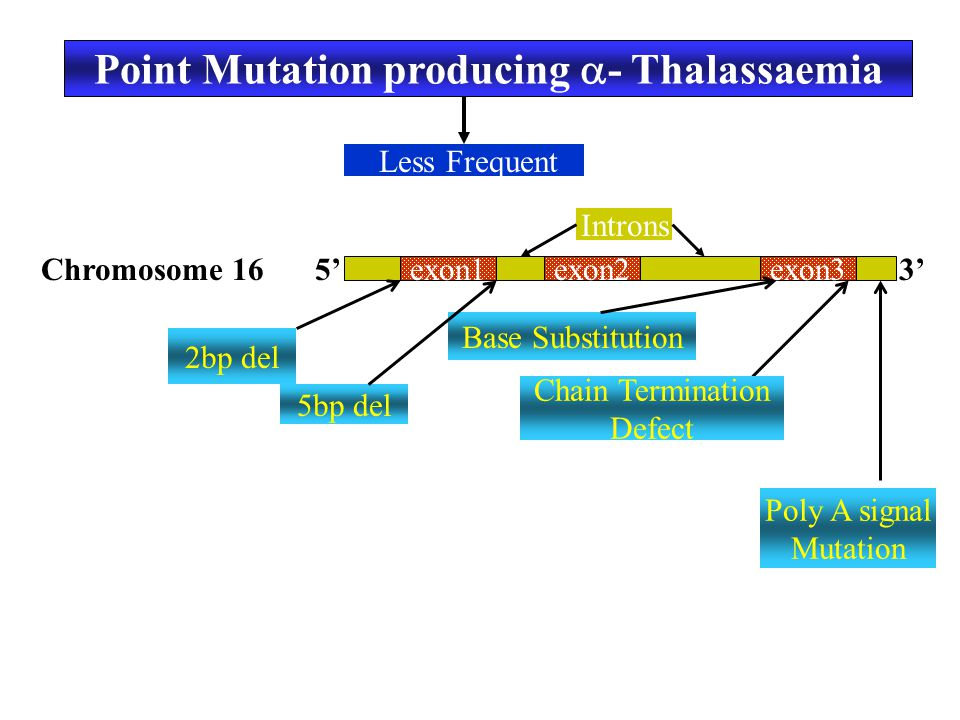 Point Mutation producing - Thalassaemia