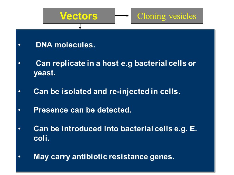 Vectors Cloning vesicles DNA molecules.