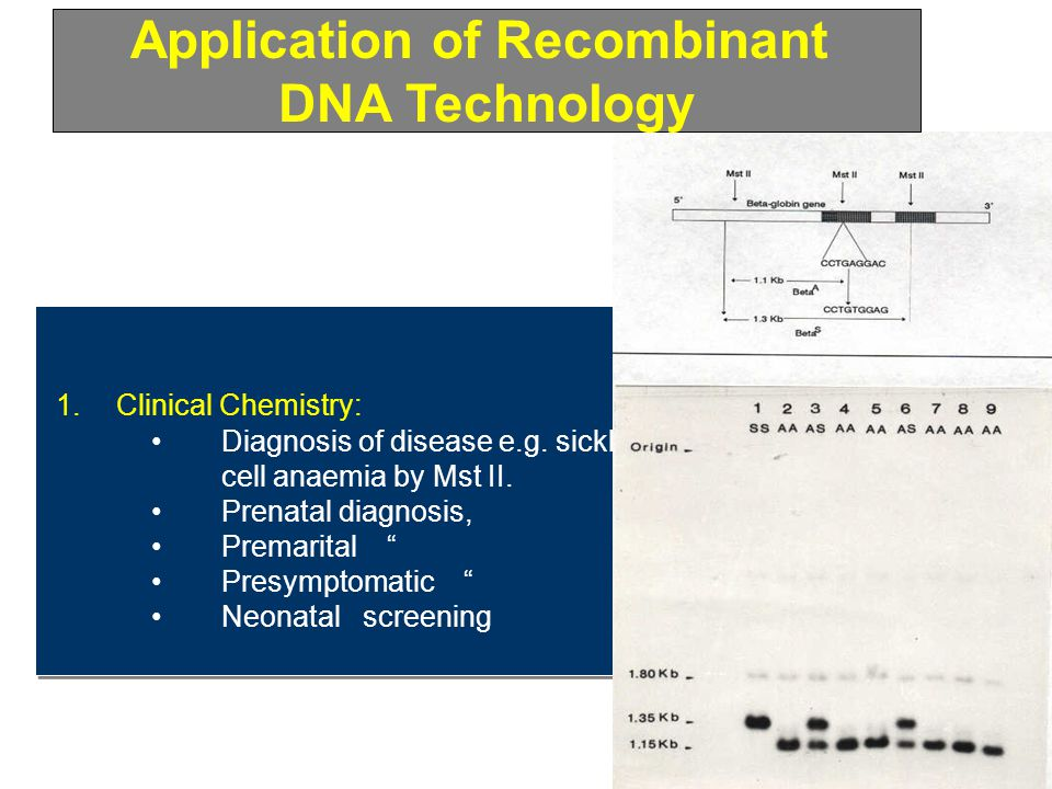 Application of Recombinant