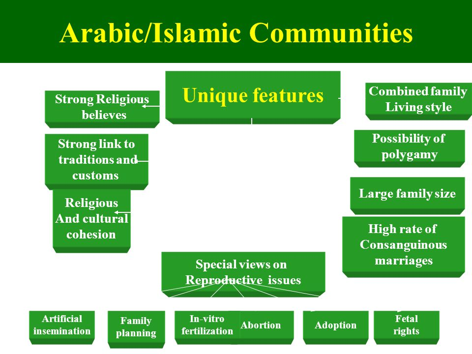 Arabic/Islamic Communities