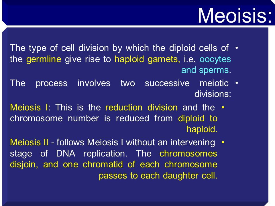 Meoisis: The type of cell division by which the diploid cells of the germline give rise to haploid gamets, i.e. oocytes and sperms.