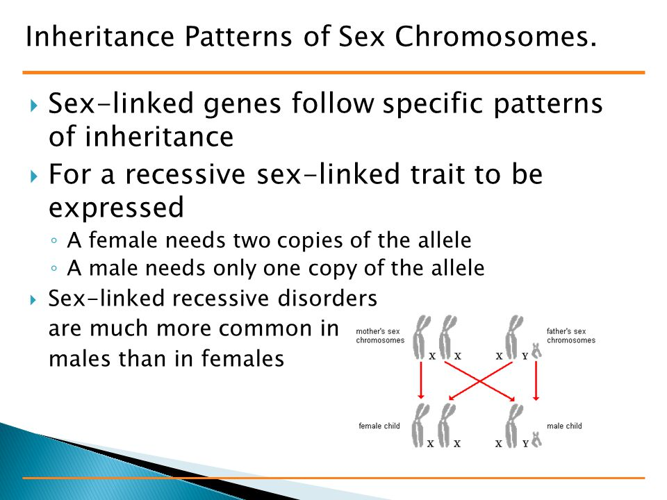 Inheritance Patterns of Sex Chromosomes.