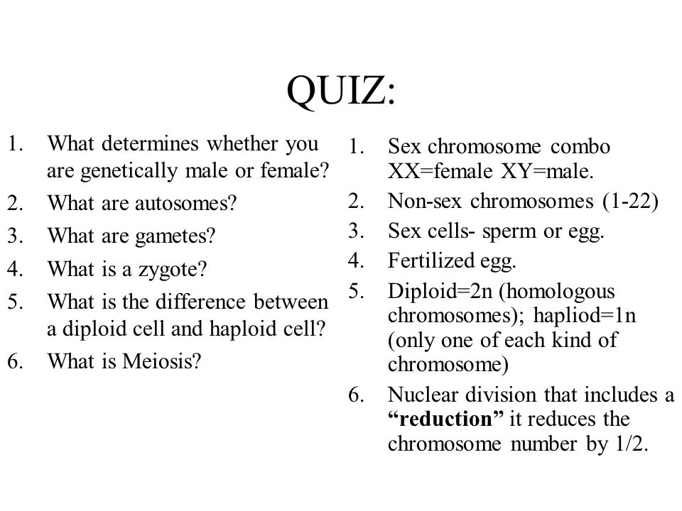 QUIZ: What determines whether you are genetically male or female