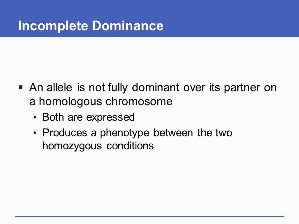 Incomplete Dominance An allele is not fully dominant over its partner on a homologous chromosome. Both are expressed.