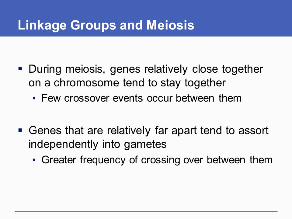 Linkage Groups and Meiosis