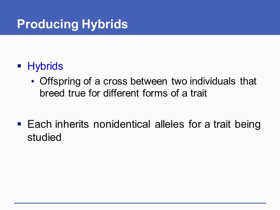 Producing Hybrids Hybrids