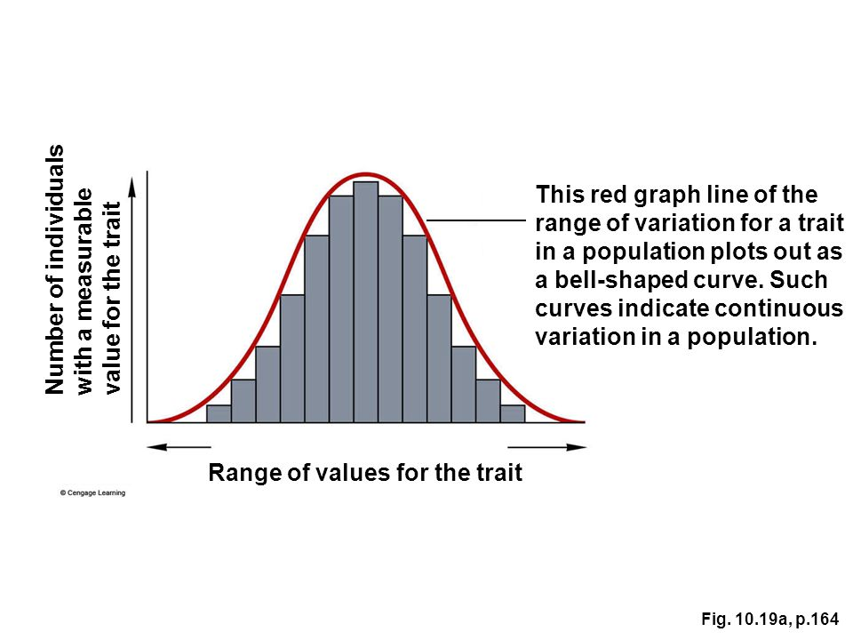 This red graph line of the range of variation for a trait