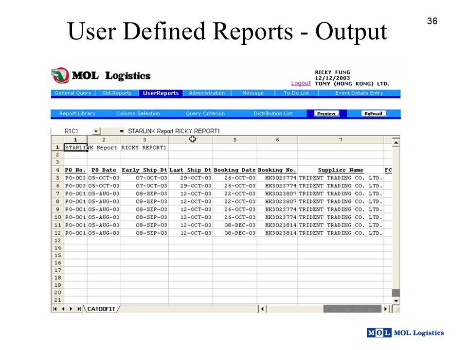 User Defined Reports - Output