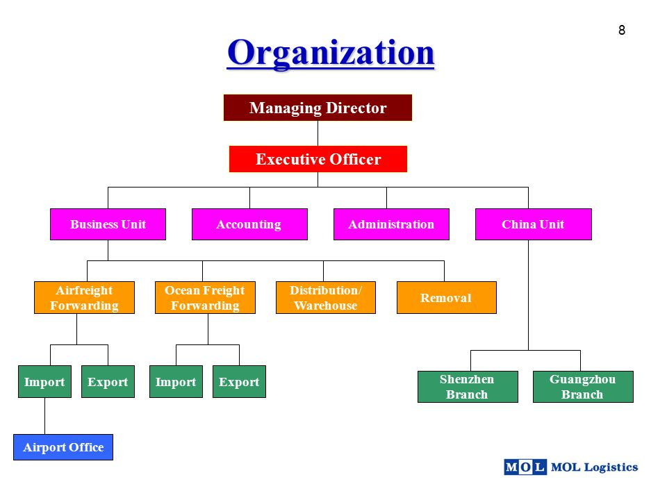 Organization Managing Director Executive Officer 8 Business Unit