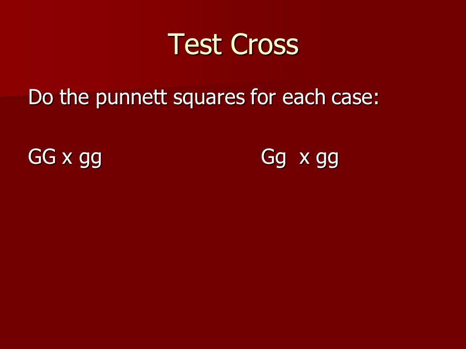 Test Cross Do the punnett squares for each case: GG x gg Gg x gg