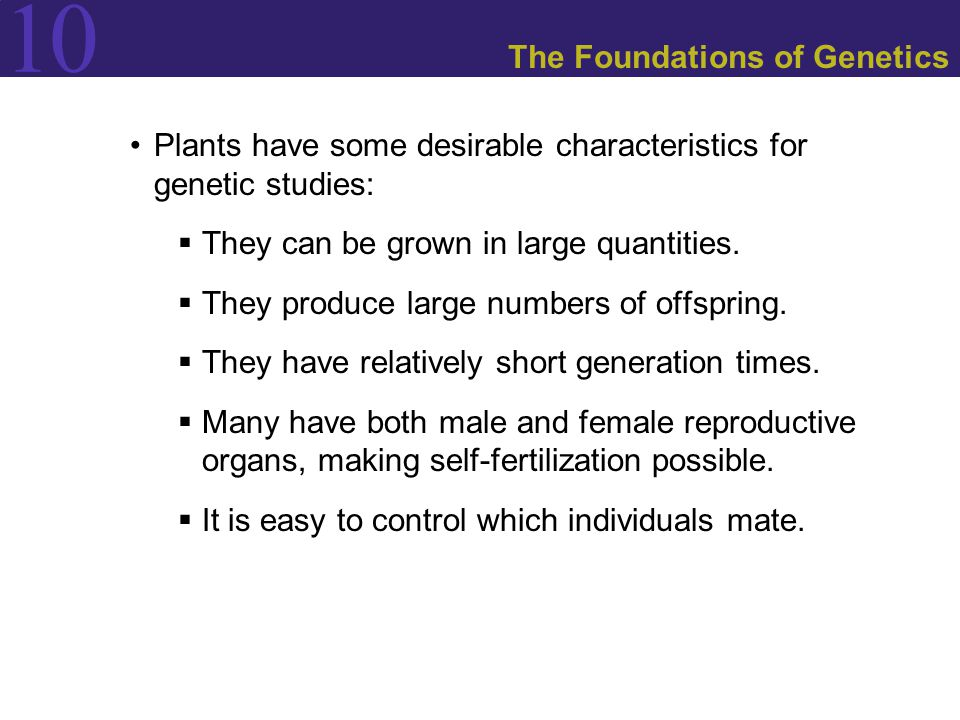 The Foundations of Genetics