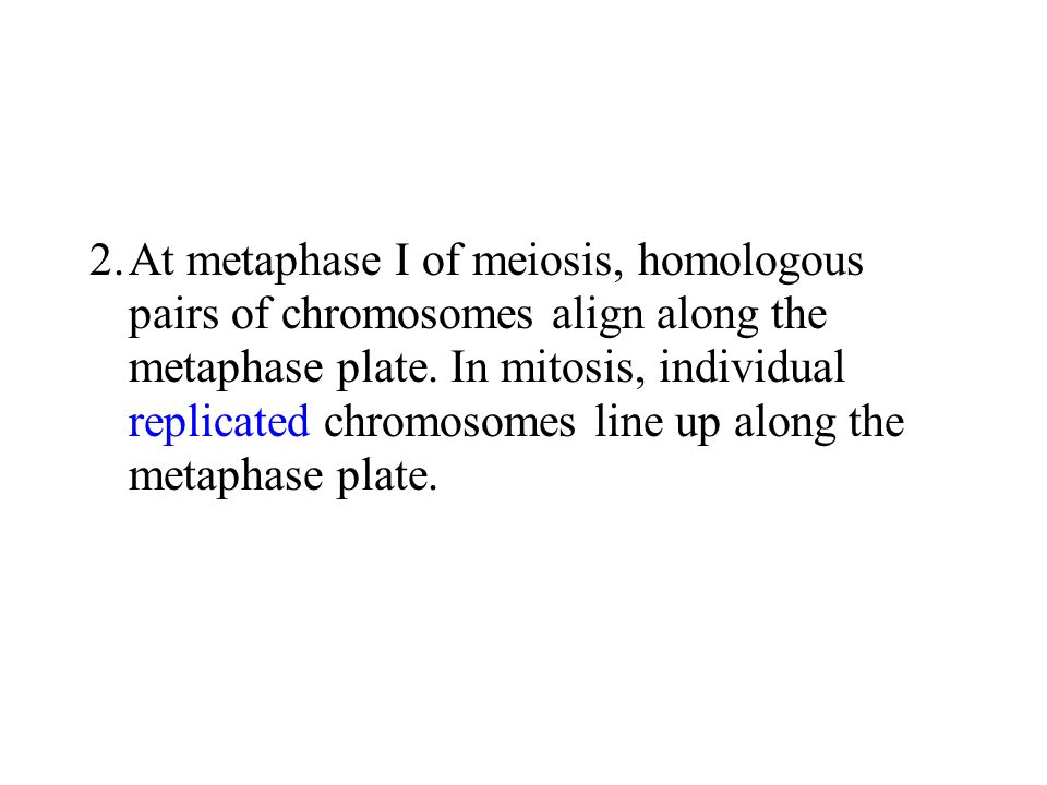 2. At metaphase I of meiosis, homologous pairs of chromosomes align along the metaphase plate.